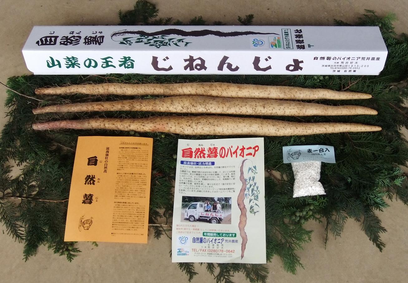 自然薯(じねんじょ)の販売なら、自然薯(じねんじょ)生産の専業農家『荒井農産』 自然薯(じねんじょ)写真